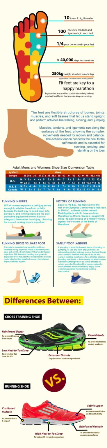 Shoes infografic